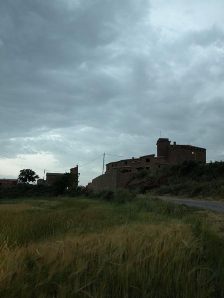 08.08.2012 '...dic adèu a l'Aranyó, nom bonic i miseteriós -lligat, segurament, amb el de Castroarigenyi, com s'esmenta el castell als documents de l'any 1100, i qui sap si amb el fruit de l'aranyoner, que fa aranyons blavosos'  L'Aranyó -  Giliet de Florejacs