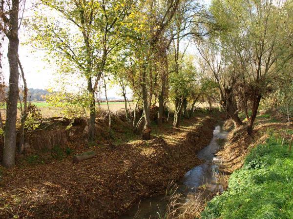 vista de la ribera del riu Sió