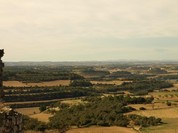 'Des del seu turó, Montfalcó domina el que en podríem dir la vall de les Oluges, en aquest punt clau on s'ajunta el riu Sió amb el torrent de Freixinet, i on conflueixen també diversos camins que serveixen la comarca.'