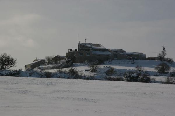 Suró nevat - Suró