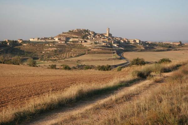 15.08.2012 '..El seu perfil, de lluny, ja fa efecte'  Granyena de Segarra -  Josep Maria Santesmasses Palou