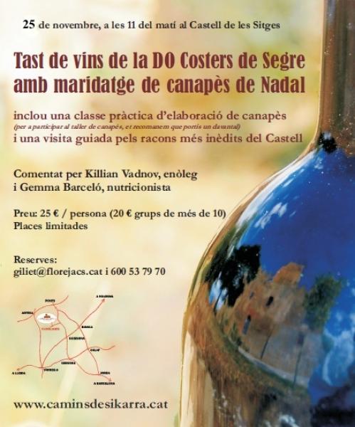 cartell Tast de vins i maridatge de canapès de Nadal