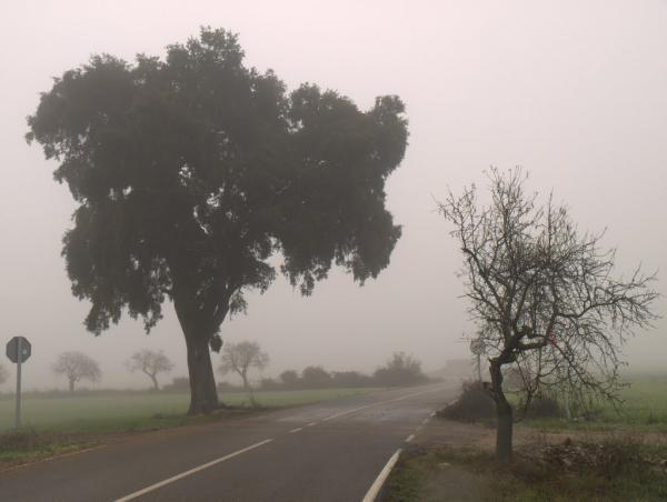 22.05.2012   El Canós -  LOM