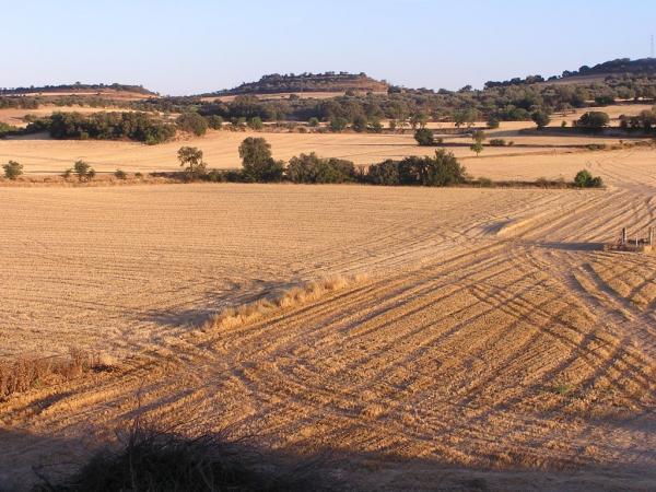 22.10.2012   El Canós -  LOM