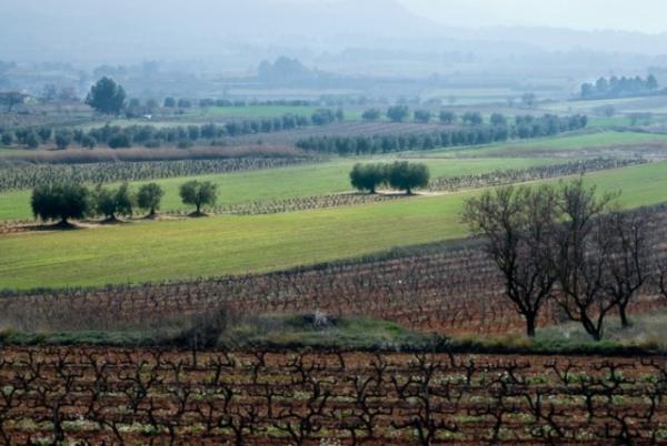 Presentació d'El Camí a la Segarra i l'Urgell - Santa Coloma de Queralt