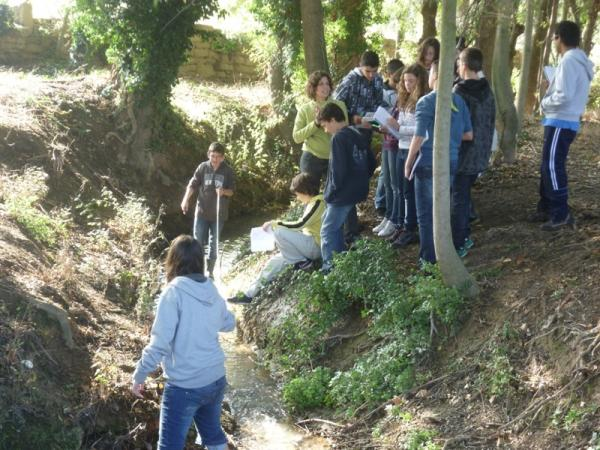 19.11.2012 Projecte Rius: alumnes de l'IES Antoni Torroja  -  Consell Comarcal de la Segarra