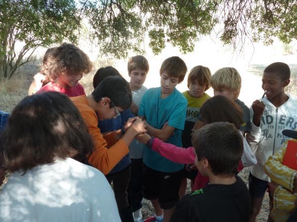 19.11.2012 Projecte Rius: alumnes de l'IES Segarra  -  Consell Comarcal de la Segarra