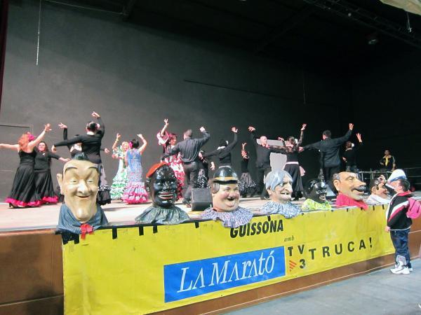 18.12.2012 Actes per la Marató de TV3  Guissona -  Ajuntament de Guissona
