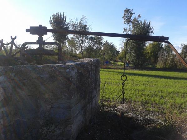 25.03.2013 Els horts amb els seus pous i restes d'antics sistemes d'extracció de l'aigua.  Hostafrancs -  Anna Vilaró