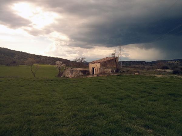 25.03.2013 Paisatge primaveral  Torà -  Ramon Sunyer