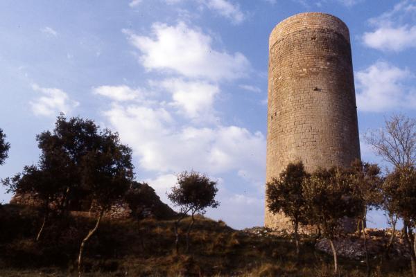27.04.2010 Torre de la Manresana  Els Prats de Rei -  Ramon Sunyer