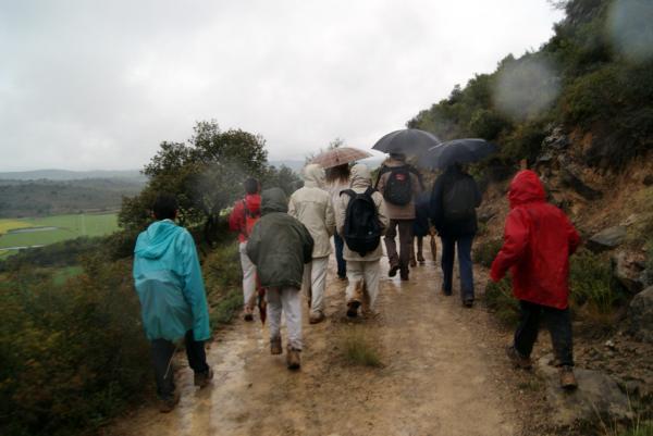 28.04.2013 Un total de 220 inscrits a la caminada  L'Aguda -  Teresa Grau