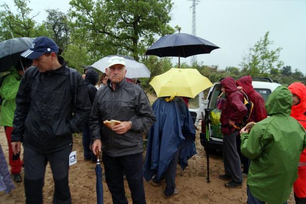 28.04.2013 La pluja no va impedir la realització de la 32a Caminada Popular de Torà  L'Aguda -  Teresa Grau