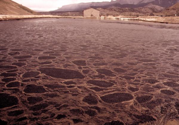 Aigua contaminada amb urani a Colorado -