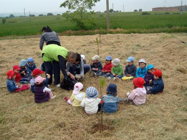 14.05.2013 Els escolars realitzen una plantada d'arbres  Sant Guim de Freixenet -  CC Segarra
