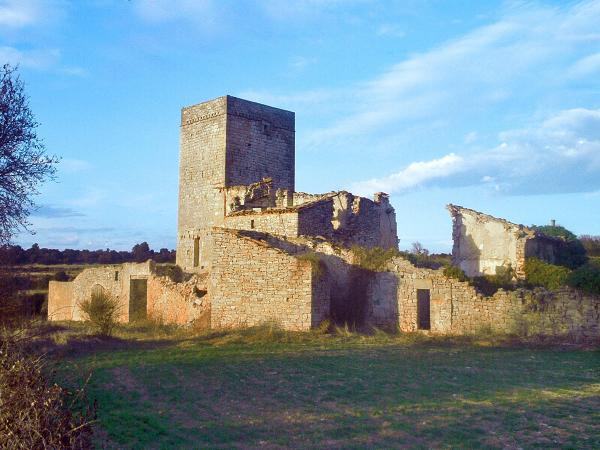 17.05.2013 La Sala de Comalats, ruïnes i torre  Passanant -  jordi domènech