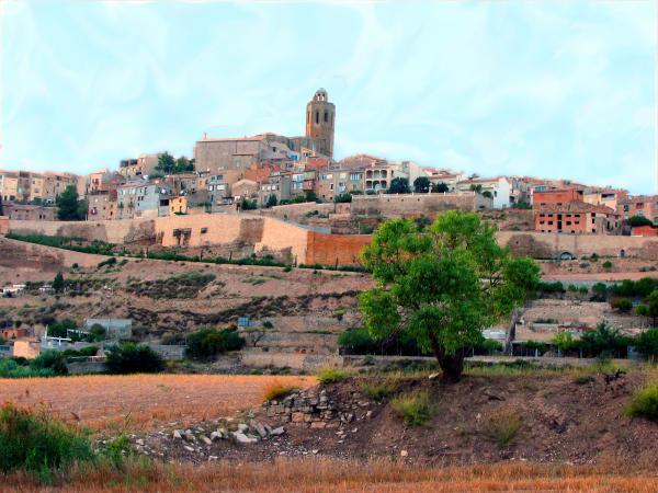 Cervera població natal de Josep Benet -