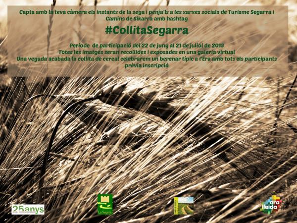 #CollitaSegarra. La collita del cereal un signe d'identitat de la Segarra. -