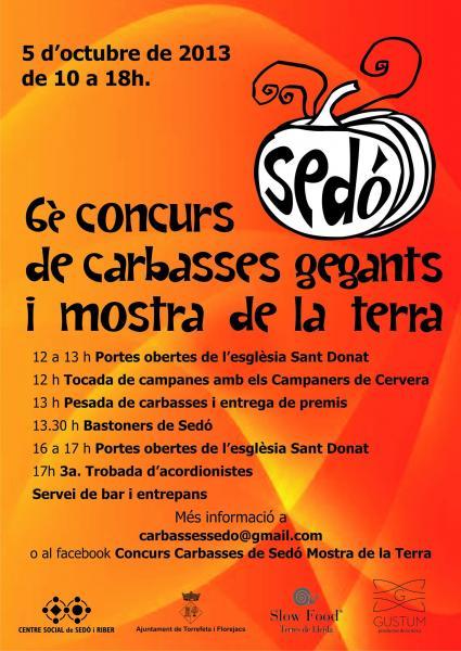 cartell 6è Concurs de Carbasses Gegants i la Mostra de la Terra de Sedó