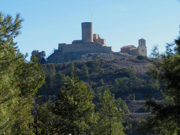 Castell de Boixadors, situat a l'extrem occidental de la serra de Castelltallat, -