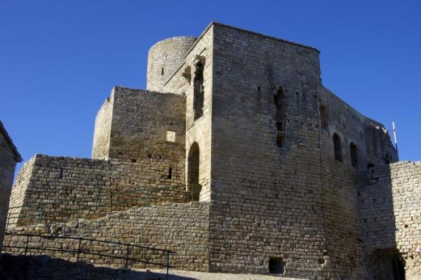 26.11.2013 Rampa d'accés al castell  Sant Pere Sallavinera -  Acna