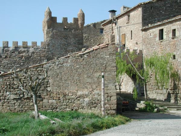 11.12.2013 Vista del castell  L'Aranyó -  CC Segarra
