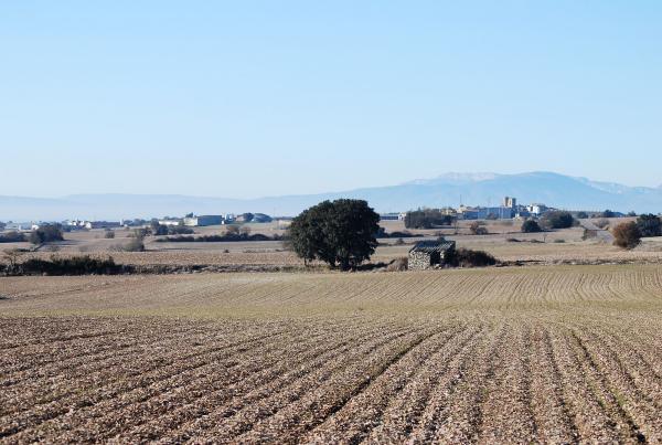 16.12.2013 Paisatge a l'altiplà  -  Ramon Sunyer