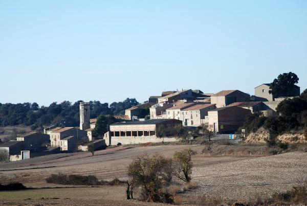 15.12.2013 Vista general  Viver de Segarra -  Ramon Sunyer