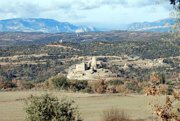 Lloberola al municipi de Biosca -