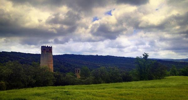 06.03.2014 la torre a la primavera  Vallferosa -  Eduardo Mur