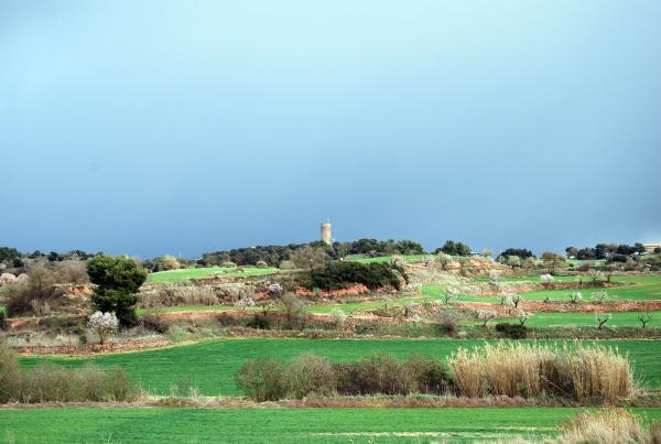 24.03.2014 Envoltant la torre  La Manresana -  Ramon Sunyer