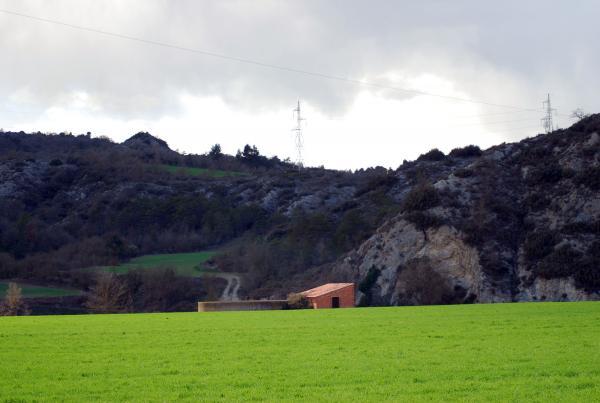 24.03.2014 Els sembrats omplen de verds la terra aspra  Vall del Llobregós -  Ramon Sunyer