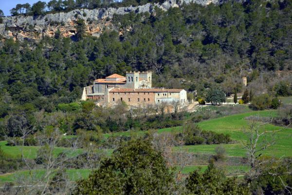 30.03.2014 Vista general  Sant Magí de la Brufaganya -  Angelina Llop
