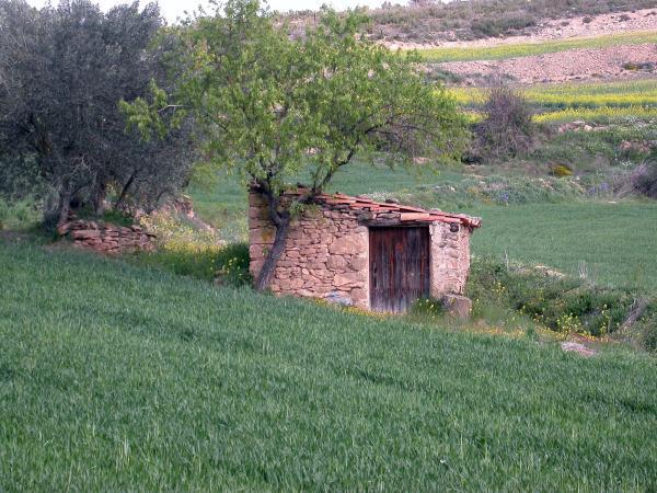20.04.2014 cabana  Castellfollit de Riubregós -  Ramon Sunyer