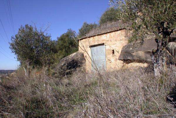 20.04.2014 Cabana de volta entre feixes d'olivers  Torà -  Ramon Sunyer