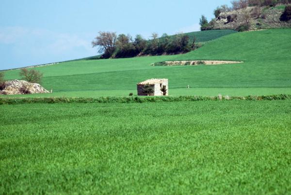 20.04.2014 cabana  Portell -  Ramon Sunyer