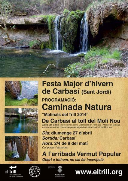 cartell CAMINADA / RUTA NATURA / DE CARBASÍ AL TOLL DEL MOLÍ NOU