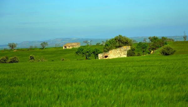 03.05.2014 cabanes  Els Plans de Sió -  Àngela Llop