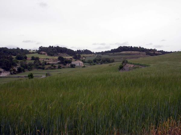 12.05.2014 paisatge  Gàver -  Ramon Sunyer