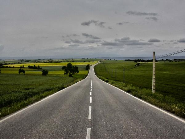 12.05.2014 els blats, la colza i lordi  Portell -  Ramon Sunyer