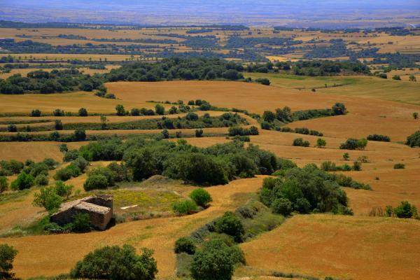09.06.2014 Paisatge des de el castell de les Sitges.  Torrefeta i Florejacs -  Àngela Llop