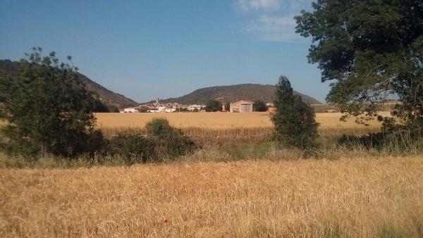 09.06.2014 el Llobregós travessa els sembrats  Torà -  Ramon Sunyer