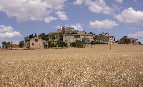 15.06.2014 Vista del poble d'Alta-riba  Alta-riba -  Ramon Sunyer