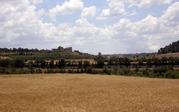 15.06.2014 Vista des d'Alta-riba  Santa Fe -  Ramon Sunyer