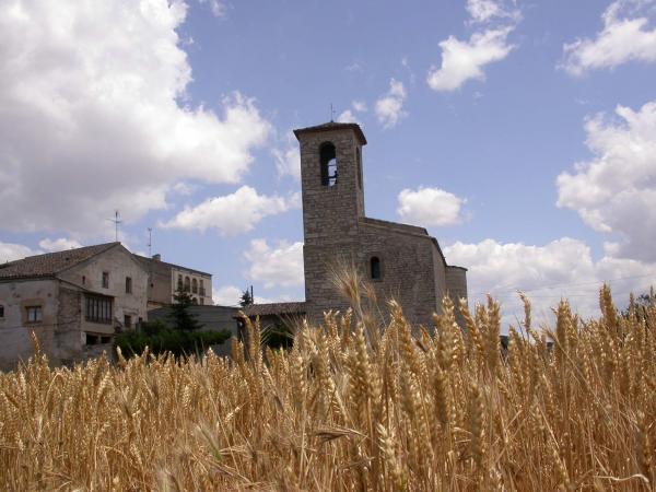15.06.2014 església romànica de Sant Pere  Santa Fe -  Ramon Sunyer