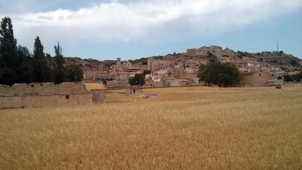15.06.2014 Vista general  Les Oluges -  Ramon Sunyer