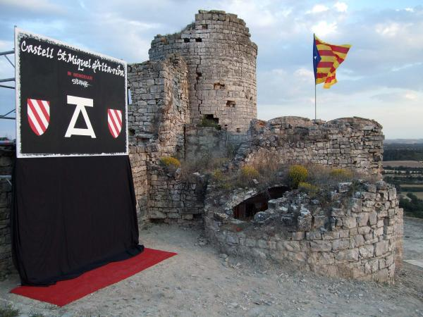 15.06.2014 V Festum Castrum  Alta-riba -  AACSMA