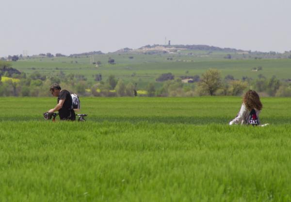 21.04.2014   Montcortès de Segarra -  marta maseras