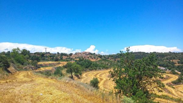 29.06.2014   Sant Pere des Vim -  Ramon Sunyer