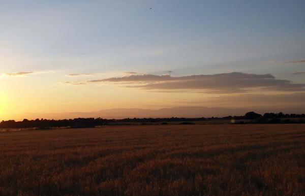 11.07.2014 posta a la serra de Montsec  L'Ametlla de Segarra -  Ramon Sunyer